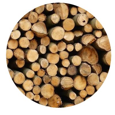 Biomassaketel Hout